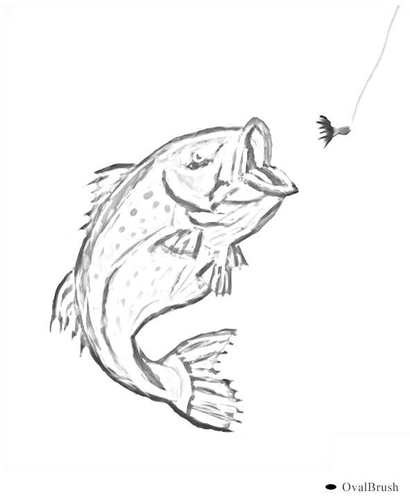 Walleye Clipart Black And White Outdoor Coloring Pages
