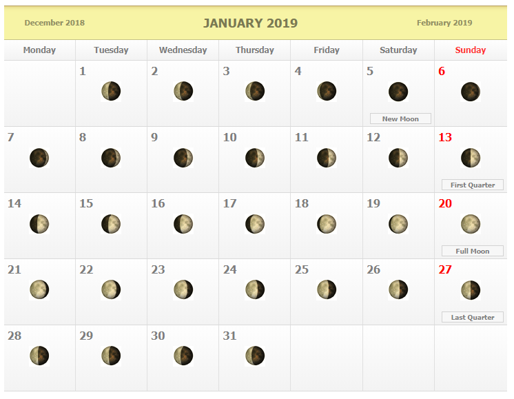 Moon Phase Calendar 2019 January January 2019 Moon Phases Calendar | Blank January 2019 Calendar