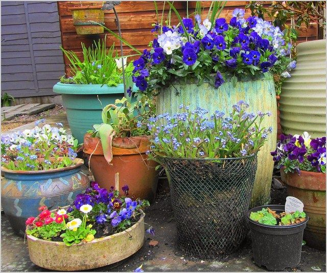 44 DIY Creative Recycled Container Gardening Ideas #ContainerGarden ...