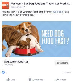 Image Result For Dog Facebook Ad Examples Facebook Ads Examples
