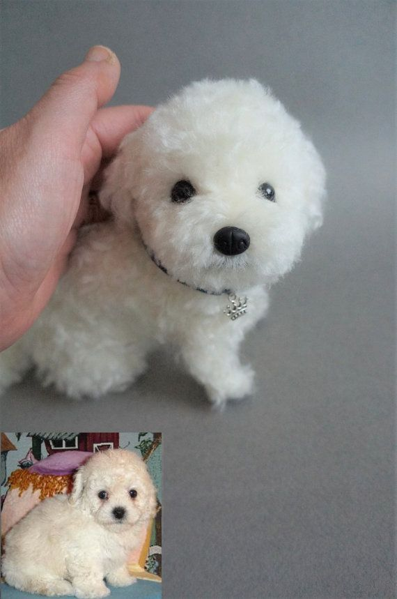 Life Size Needle Felted Puppy Dog Maltese Bichon Frise Maltipoo