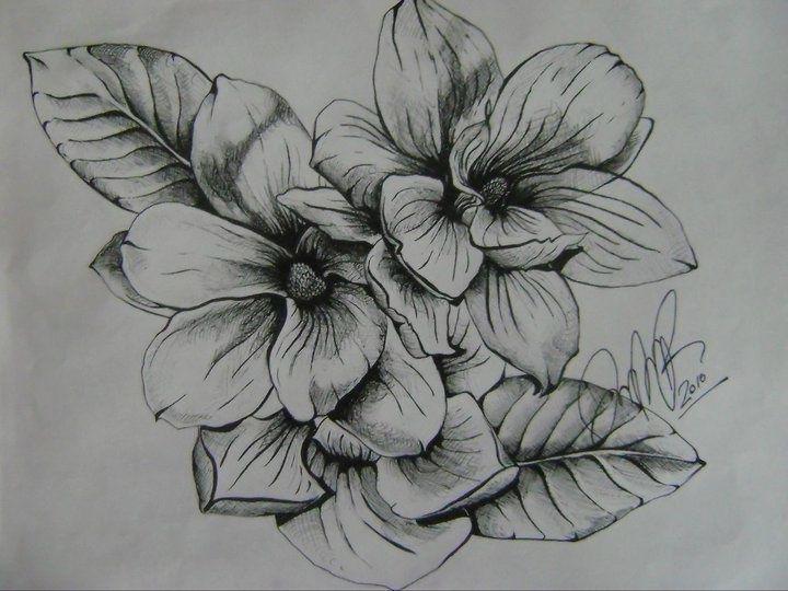 Flower Tattoo Tumblr Google Zoeken Flower Tattoo Southern Tattoos Magnolia Tattoo