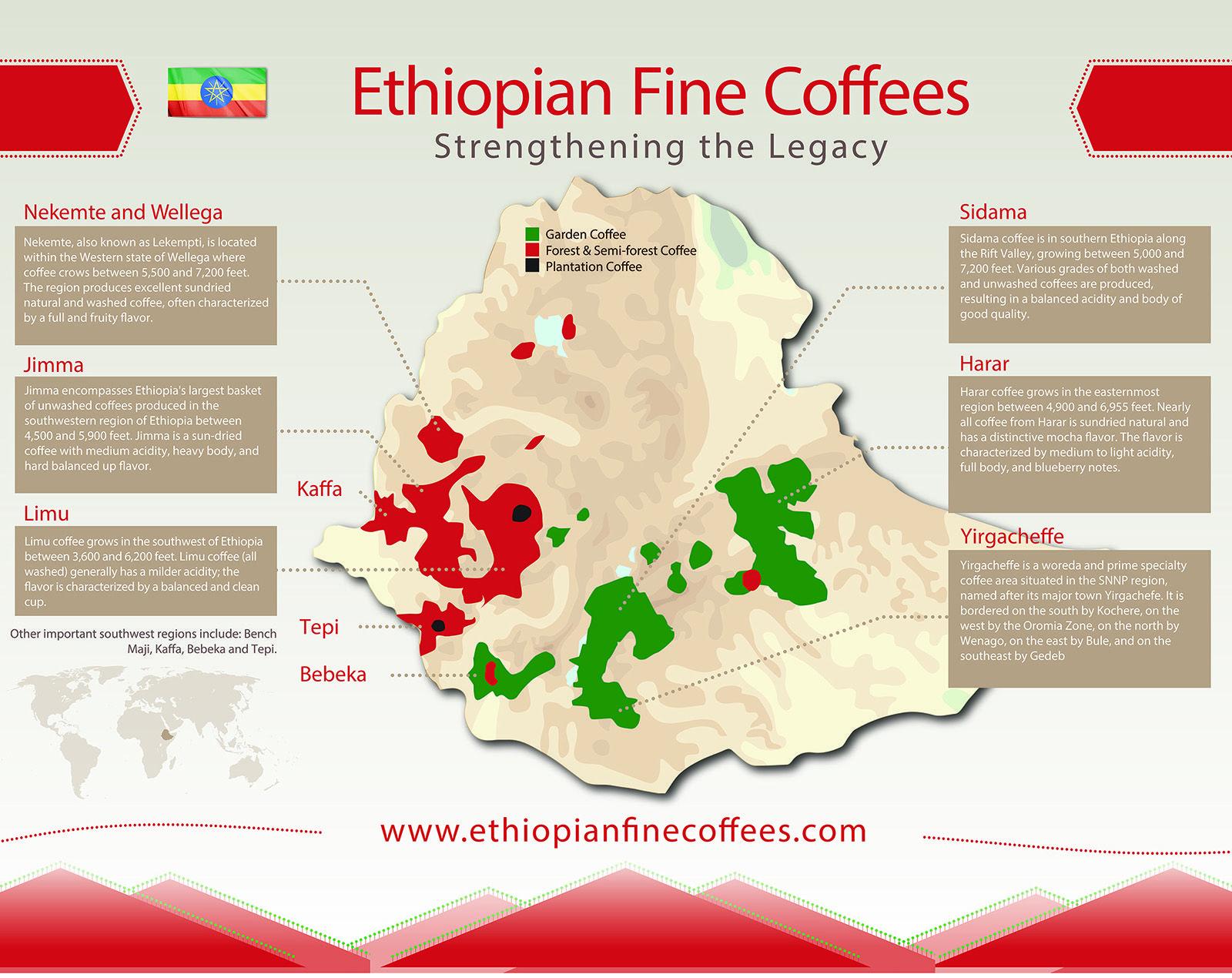 Ethiopia  Coffee Growing Regions  Pinterest  Ethiopia Coffee