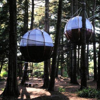 les nids du parcabout sur l 39 le de groix les plus beaux voyages pinterest ile de groix le. Black Bedroom Furniture Sets. Home Design Ideas