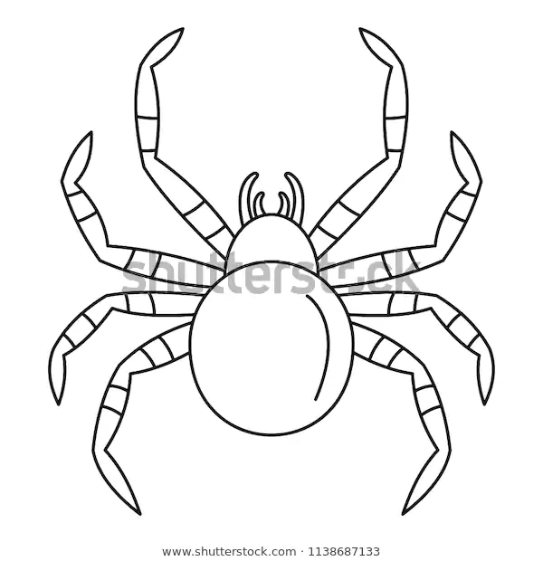 Tarantum Spider Icon Outline Tarantum Spider Stock Vector Royalty Free 1138687133 Icon Outline Stock Vector