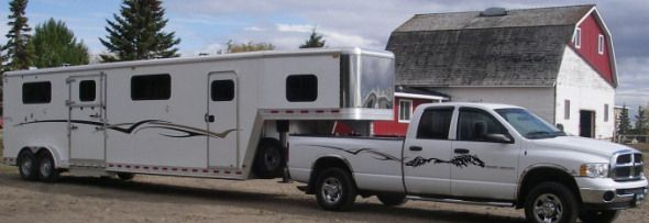 Horse Decal For Side Of Truck This Looks Great On A White Truck -  horse graphics for trucks