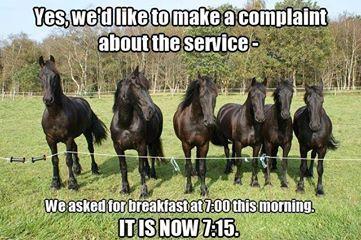 Um, we'd like to make a complaint.