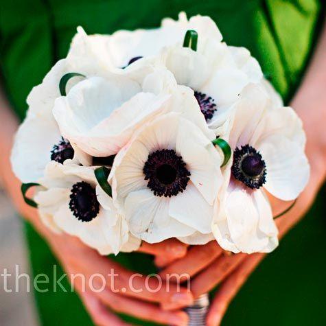 Black and white anemones | Wedding Ideas | Pinterest | White anemone ...