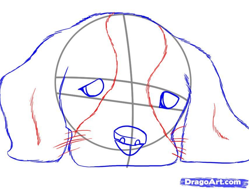 you didnt think i was going to submit a tutorial on a realistic cat and not do a lesson on a realistic dog did you