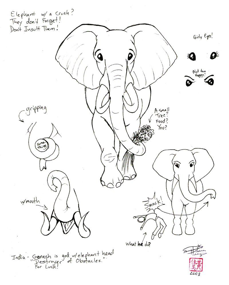 Draw an elephant 2 part2 by diana huang on deviantart i 39 m drawing a blank pinterest - Dessin elephant ...