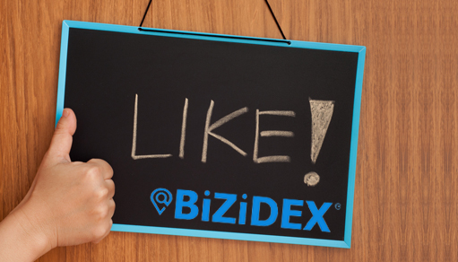 This is exactly what the impression BiZiDEX get from the customers who's working with us, What about you ? What are you waiting for? Join us today and let's build up an amazing worldwide business community.  https://bizidex.com/?bizi=29