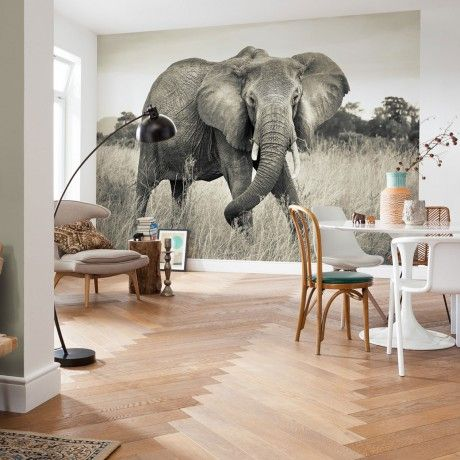 elephant fleece mural by komar monoqi wandkunst. Black Bedroom Furniture Sets. Home Design Ideas