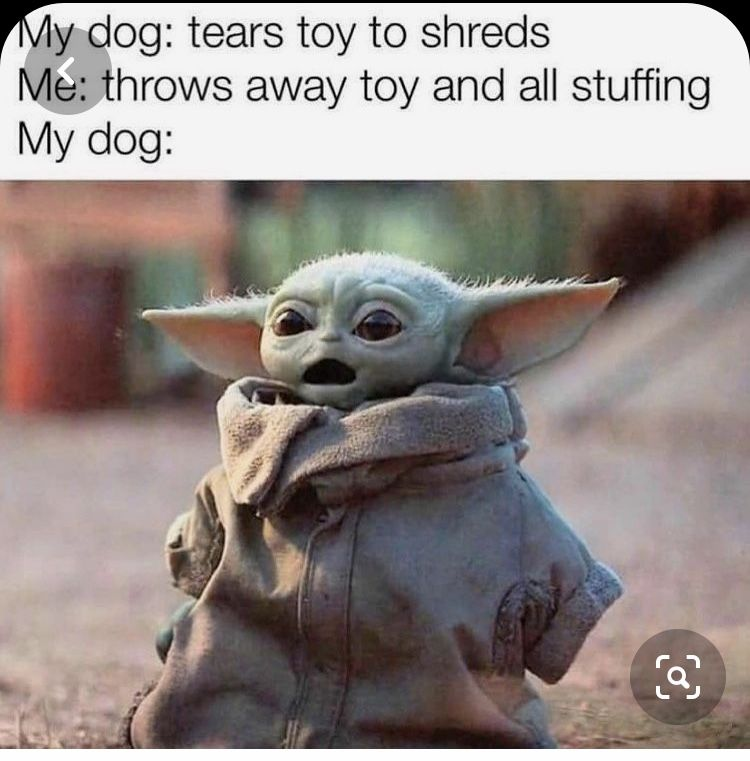 Baby Yoda Dog Toy Shred Yoda Funny Yoda Meme Funny