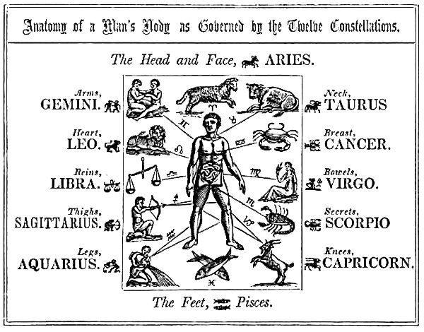 B Ed D C C C on Zodiac Ruling Body Parts