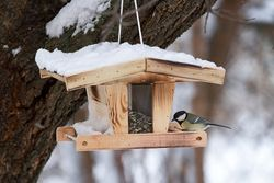 Futterhäuschen Aus Holz Selber Bauen Vogelhaus Vogelhaus