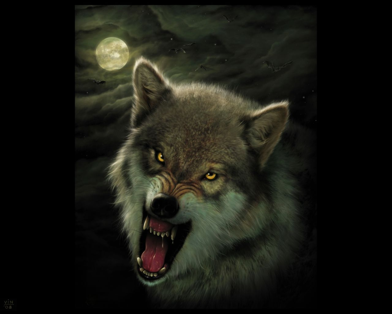 awesome wolf pics awesome wolf backgrounds pic wolfs hd
