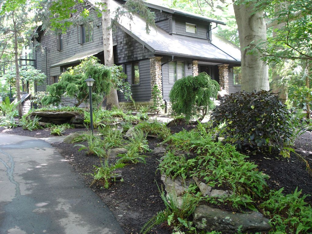 Natural Front Of House Landscape In Washington Township Nj