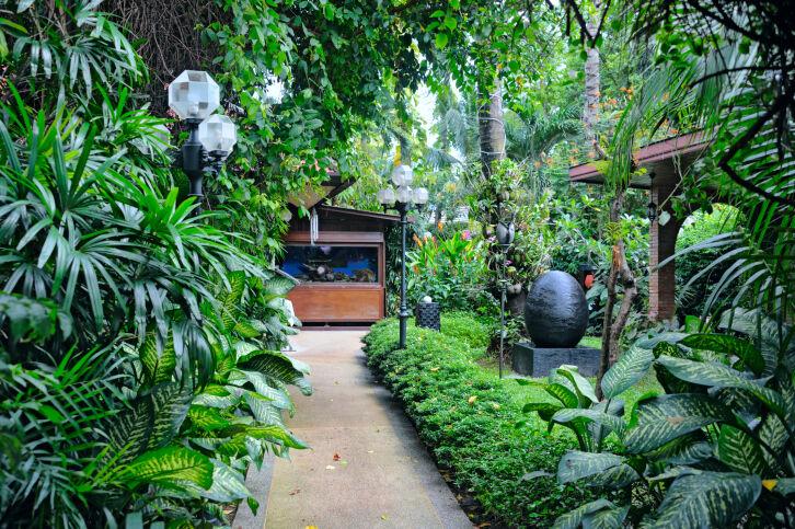 jardines tailandia - Búsqueda de Google #tropischelandschaftsgestaltung