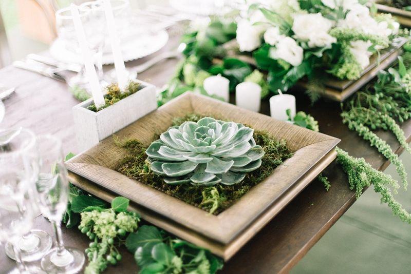 7 formas de incluir suculentas na decorao de casamento