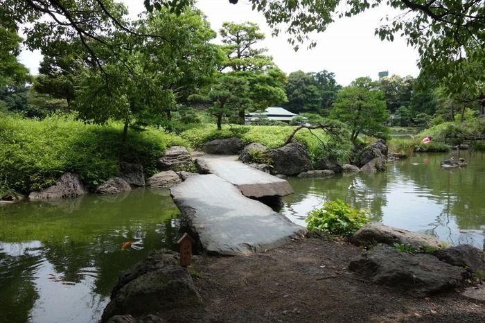 下町風情と水辺の景色。コーヒーで人気の「清澄白河」周辺を散策しましょう。