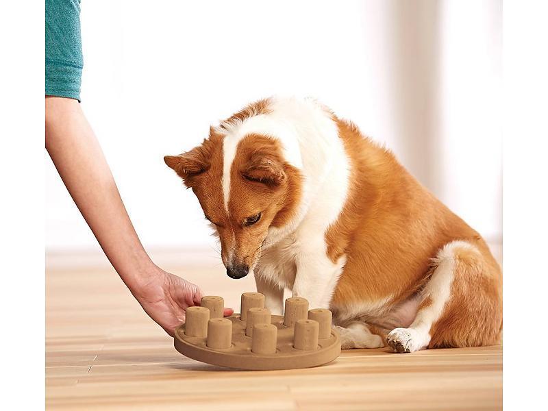 Nina Ottosson Dog Smart Treat Puzzle Dog Toy Petdesignz