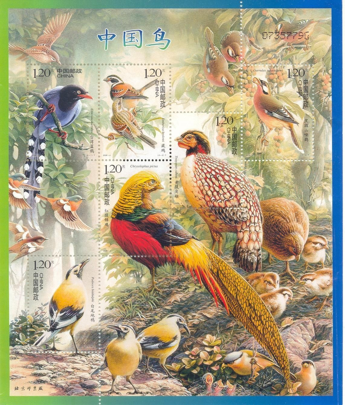 All Types Of Birds Fan Art China Bird Stamps Birds Bird Stamp Stamp