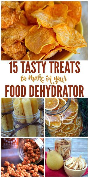Dried Fruit + More Tasty Food Dehydrator Recipes
