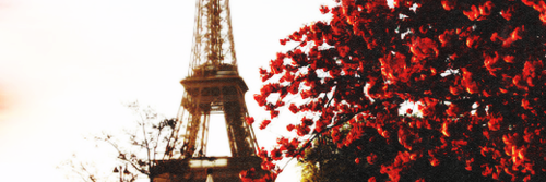 Red Header Tumblr Header Pinterest Header Tumblr Header And