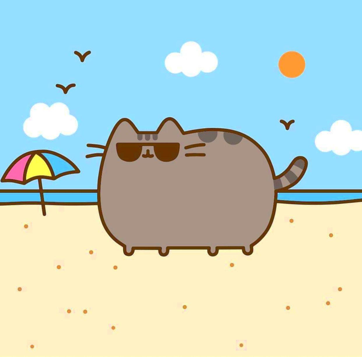 Pusheen beach Pusheen, the Adorable Bouncy Cat