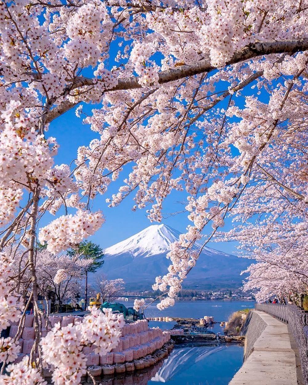 Japan Fuji Fotografi Alam Pemandangan Fotografi Pemandangan