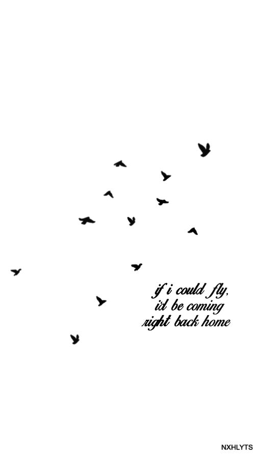 If I Could Fly One Direction One Of My Fav Songs Of Theirs Love These Birds For A Tatto One Direction Lyrics One Direction Quotes Song Lyrics One Direction
