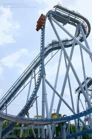 Griffon Busch Gardens Williamsburg Been there done that