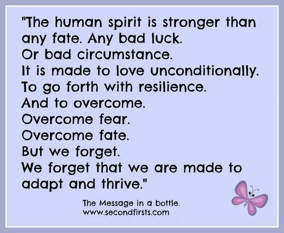 Quotes About The Human Spirit Quotesgram: Thoughts & Sayings...