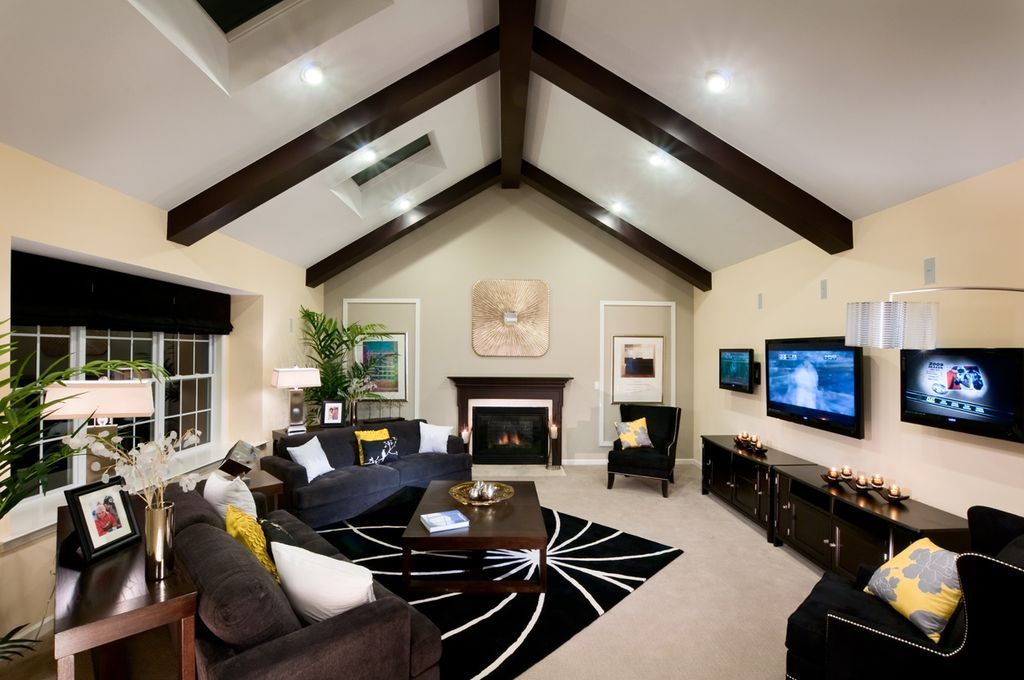 Contemporary Living Room With Skylight Wall Sconce Carpet Cathedral Ceiling Exposed Beam Contemporary Living Room Living Room Carpet Home