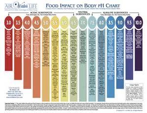 Alkaline Meals - Bing images