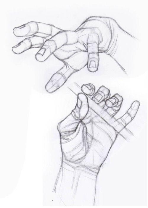 anatomy references  u0026 tutorials
