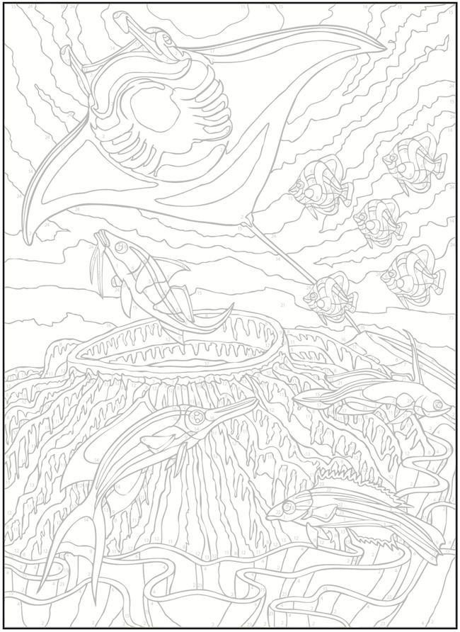 Welcome to Dover Publications Creative Haven Sea Life Color by ...