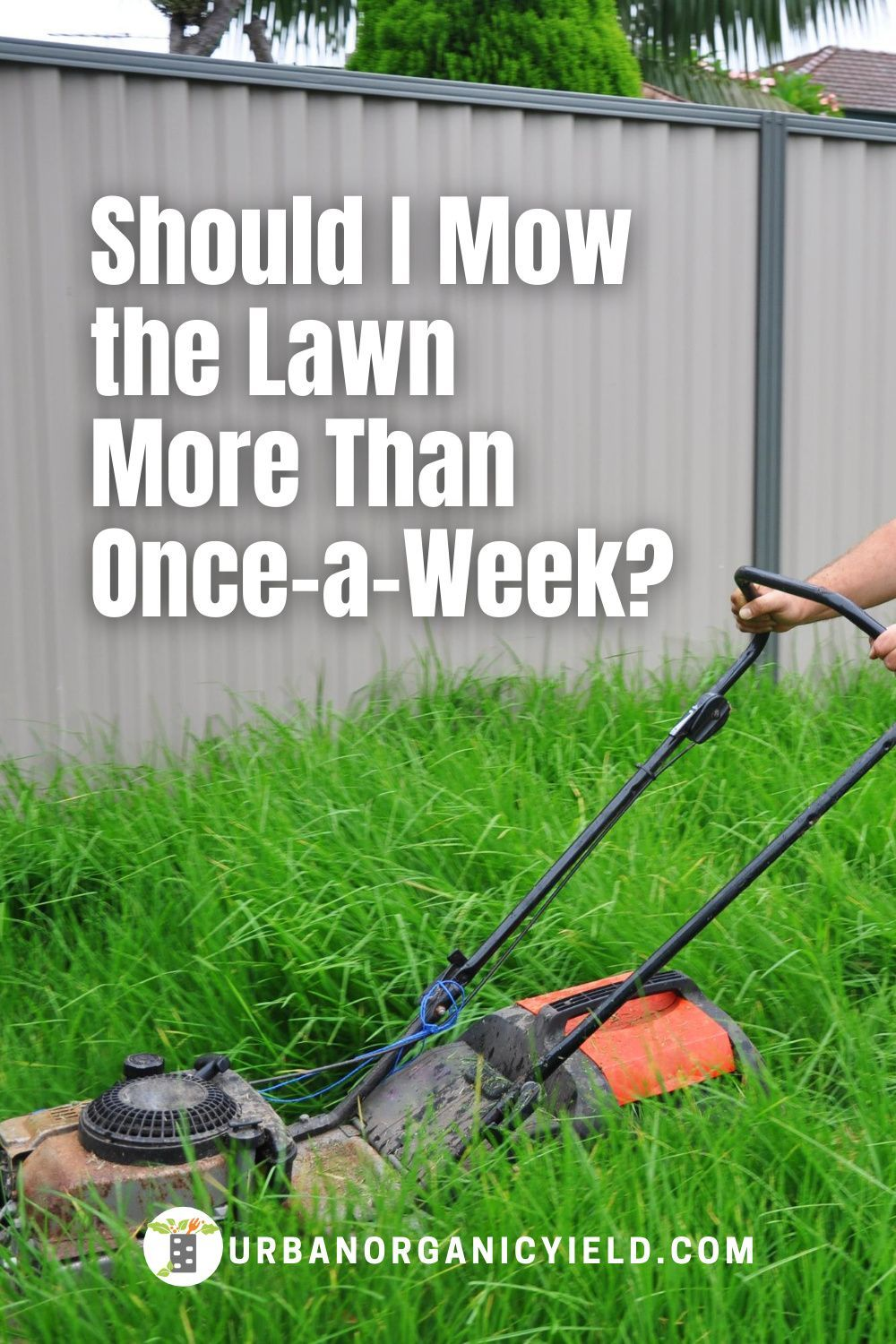Mowing The Lawn Tips For Home Mowing Lawn Lawn Care