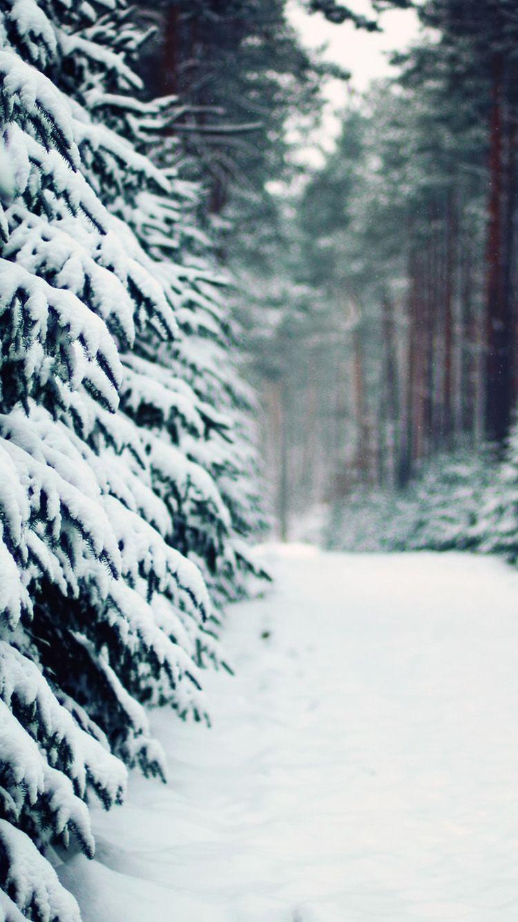 забудьте простить снег для фото на айфон находится