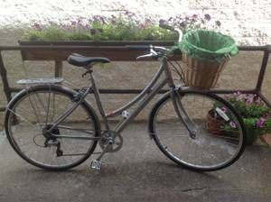 350 Globe Daily Chicago Bicycles Classifieds Globe