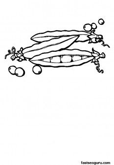 Print Out Vegetable Peas Coloring Page Printable Coloring Pages