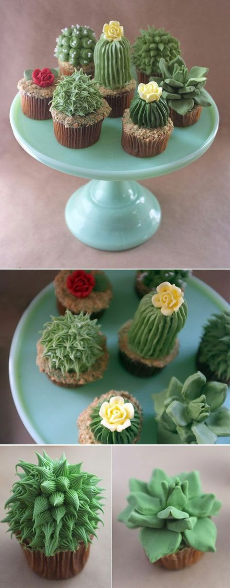 Cupcakes Rezepte für Anfänger: Törtchen backen leicht gemacht #cupcakesrezepte