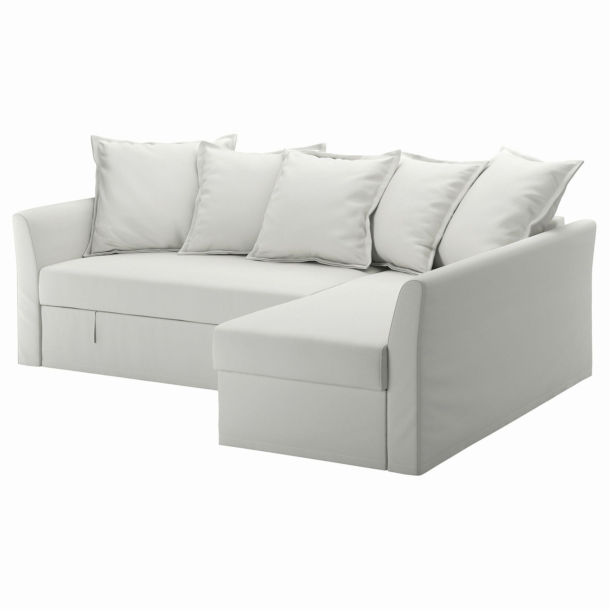 Elegant Chair Sleeper Sofa Pics Chair Sleeper Sofa Luxury Sleeper