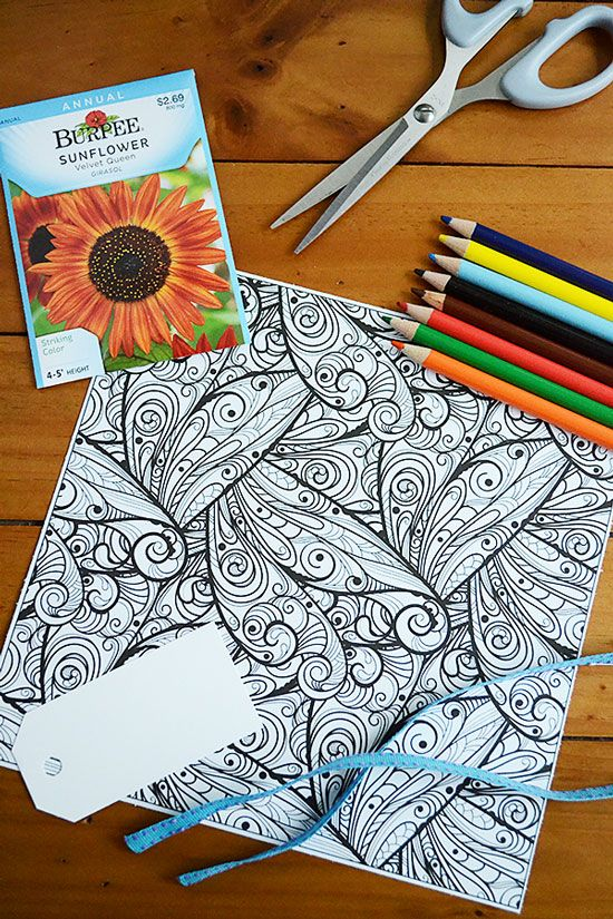 Learn How To Make Custom Seed Packets From Adult Coloring Book Pages With This Quick Tutorial