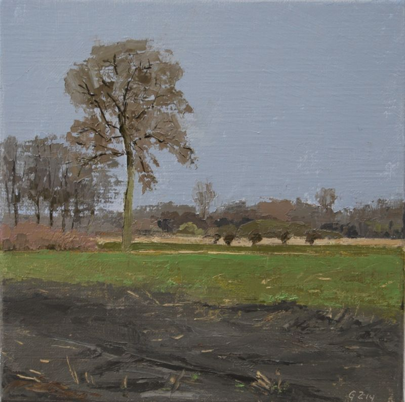 Dutch landscape (30 x 30 cm)