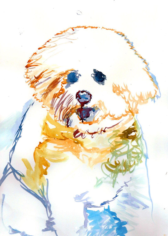 Bichon Frise Dog Original Art Print 8x10 Matted to 11x14