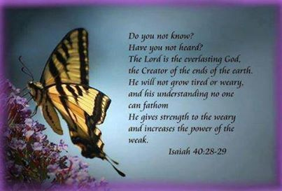 Do you know? Have you heard? That Lord is everlasting God!