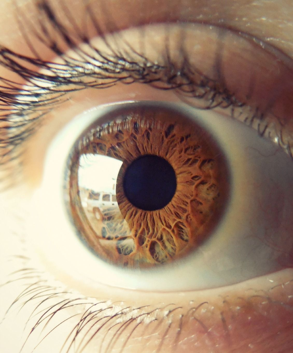 There Is More Than Meets The Eye Beautiful Eyes Color Eye