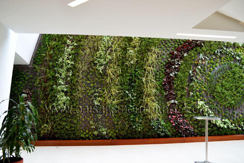 Fachadas vegetales plantas ignacio solano hotel cosmos 100 for Muros y fachadas verdes jardines verticales
