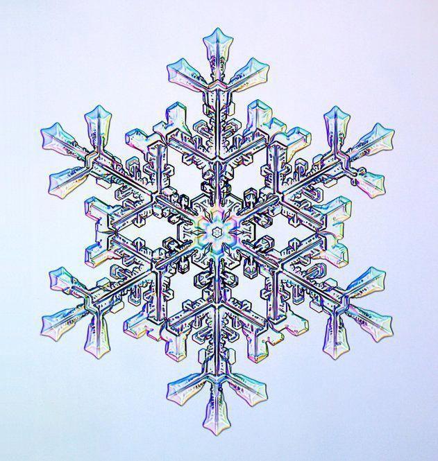 Die Fotografien eines Physikers zeigen Schneeflocken in einer schillernden Vielfalt …,  #di…